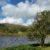 Trefriw's Classic Two Lakes